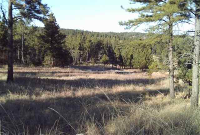 Lot 15 Saddleback, Hermosa, SD 57744