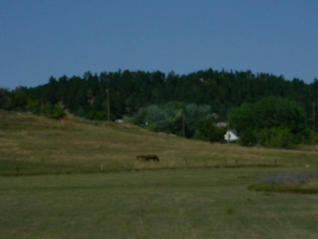 Lot 10 N South, Whitewood, SD 57793