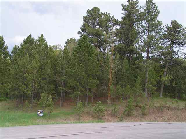 Lot 12 Frog Pond, Whitewood, SD 57793