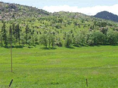 24651 Iron Mountain, Keystone, SD 57751