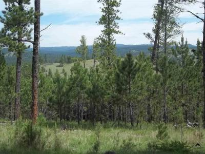 Photo of TBD Sd Hwy 89, Custer, SD 57730