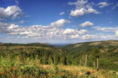 Last Chance Ridge, Deadwood, SD 57732