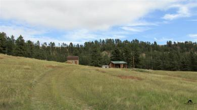 253 Red Canyon Road, Beulah, WY 82712