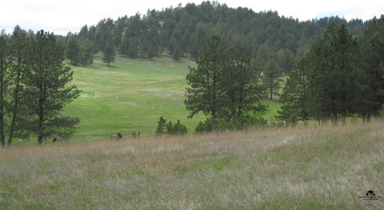 Mls 53259 Tbd Beaver Creek Road Custer Sd 57730