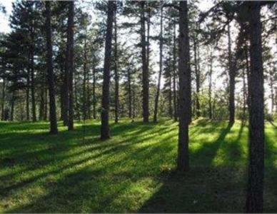 23639 Wilderness Canyon, Rapid City, SD 57702
