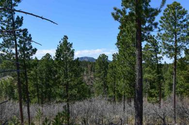 TBD Tract 54, 38, 39 Aspen Hills, Spearfish, SD 57783