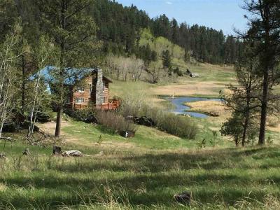 Photo of 24662 Saginaw Road, Custer, SD 57730