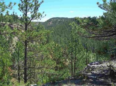 TBD Remington Rd, Custer, SD 57730