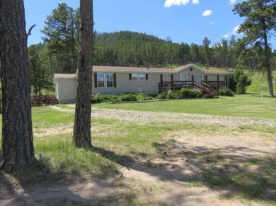 25909 Carroll Creek Road, Custer, SD 57730