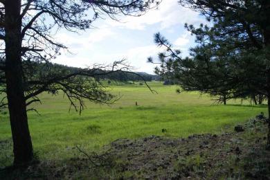 Tract 9B Sidney, Custer, SD 57730