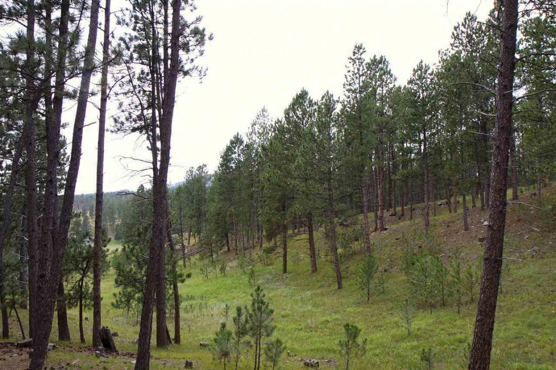 TBD Upper French Creek Road, Custer, SD 57730