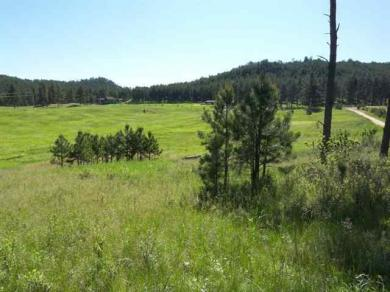 Lot 23 Bowman Ranch Subd., Custer County, SD 57730