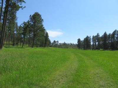 Photo of 25553 Glen Erin Road, Custer, SD 57730