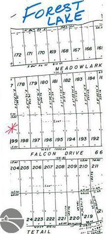 Falcon Drive Lot 199, Alger, MI 48610