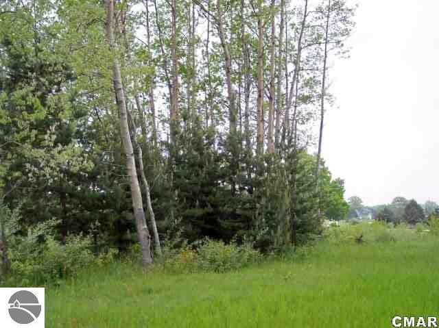 1055 Queensway Drive Lot 28, Lake Isabella, MI 48893