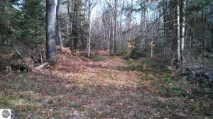 North Trail, Kalkaska, MI 49646