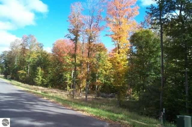 001 Heather Ridge Trail, Beulah, MI 49617