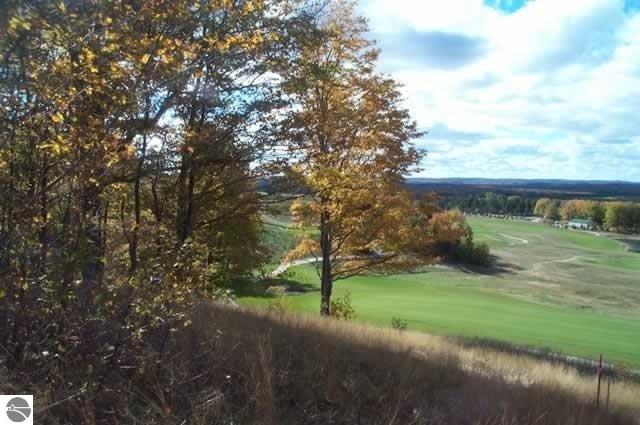 0017 Heather Ridge Trail, Beulah, MI 49617