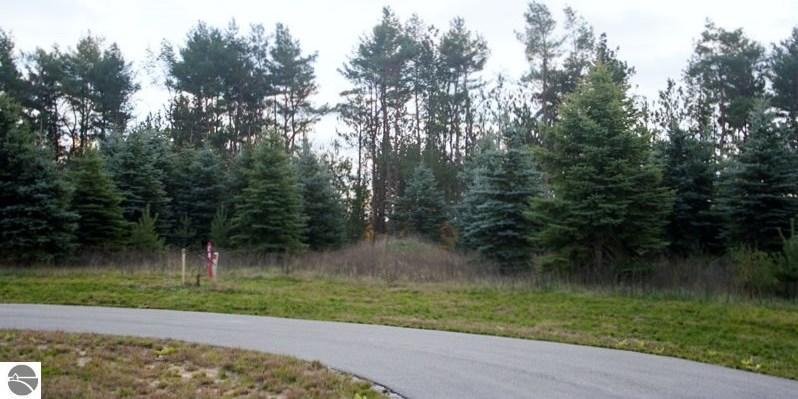 0023 Lipp Farm Road, Benzonia, MI 49616