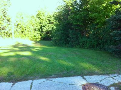 Photo of 823 Michigan Avenue, Benzonia, MI 49616