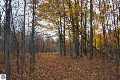 00 Robin Ridge Road, Interlochen, MI 49643