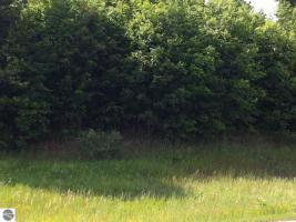 7834 Floreys Ranch Road, Buckley, MI 49620