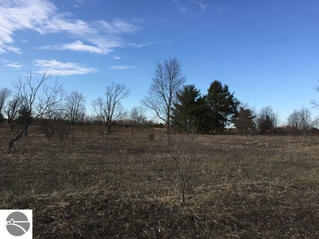 Lot #24 Arthur Lane, Elmira, MI 49730