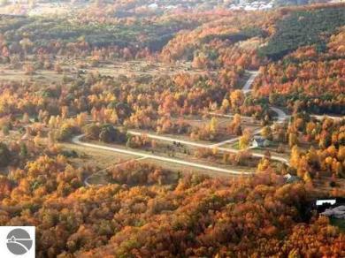 22 High Meadow Trail, Frankfort, MI 49635