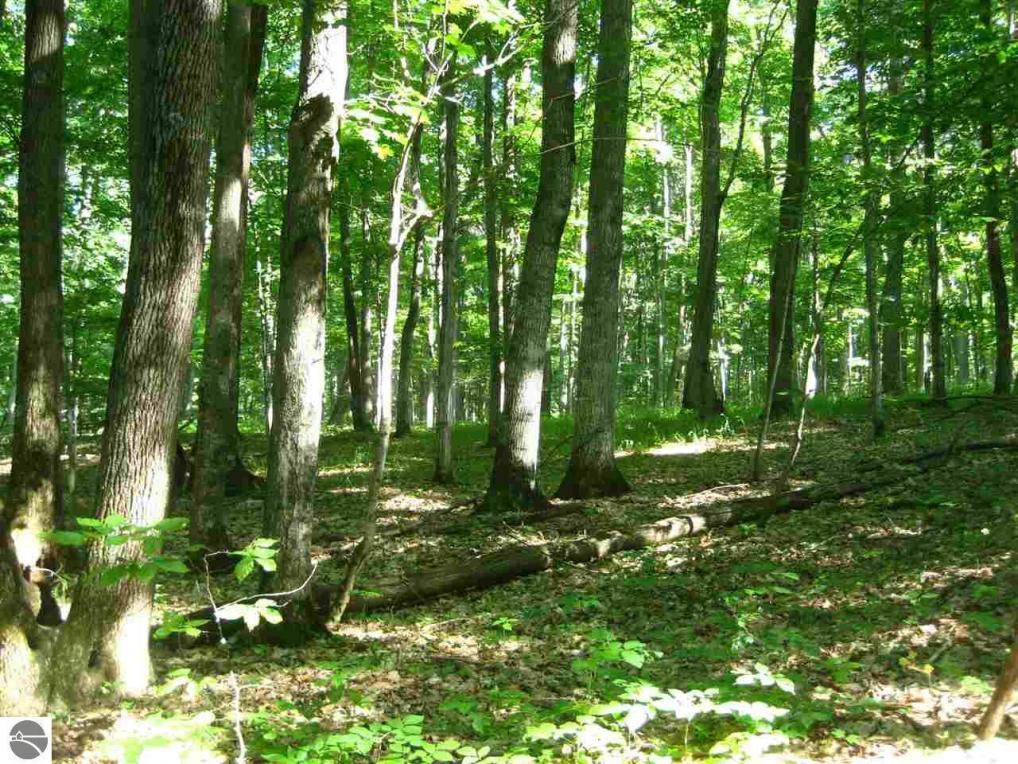 000 W Cheney Woods Trail, Glen Arbor, MI 49664