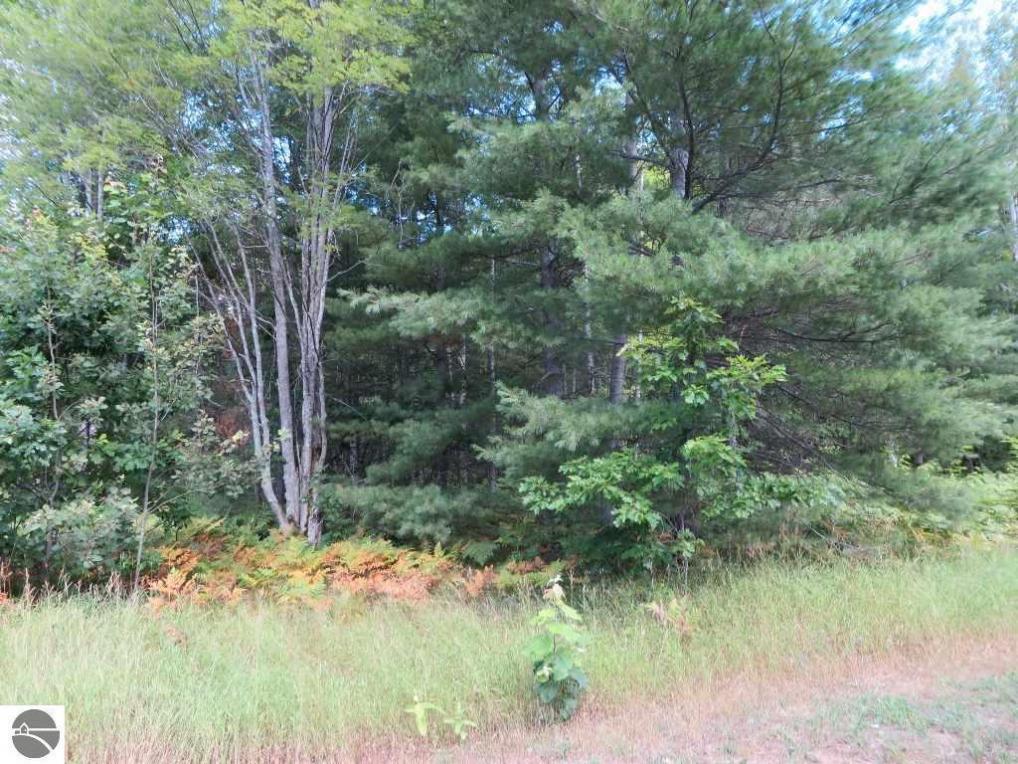 2215 NE Driftwood, Kalkaska, MI 49646
