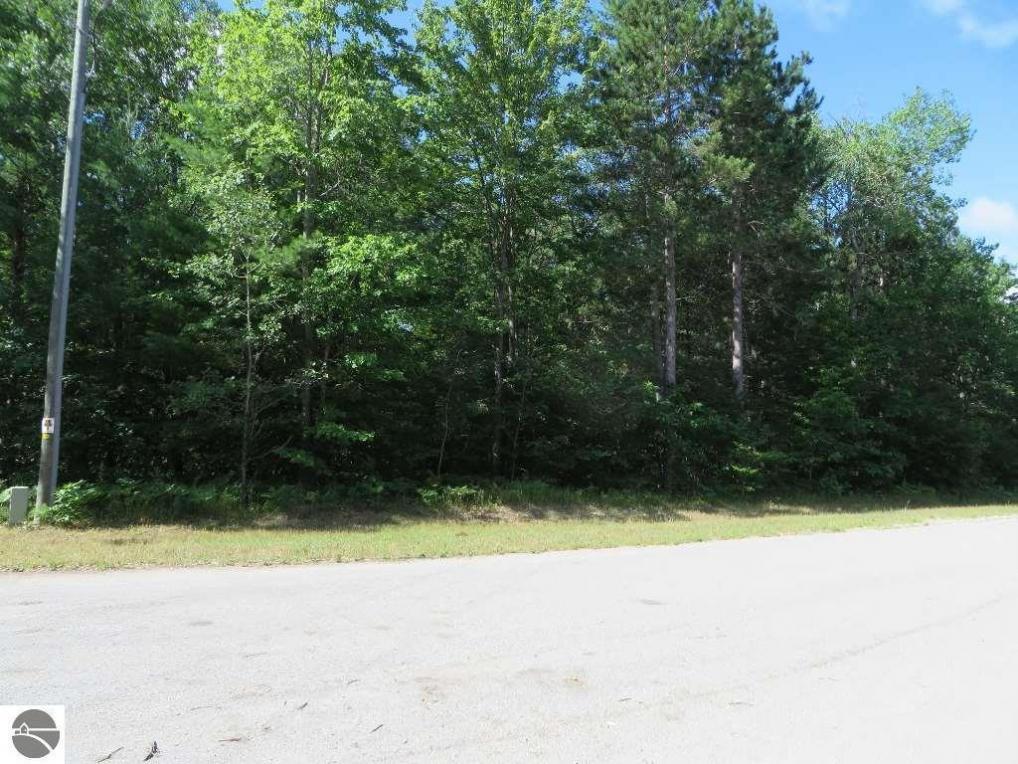2200 NE Driftwood, Kalkaska, MI 49646