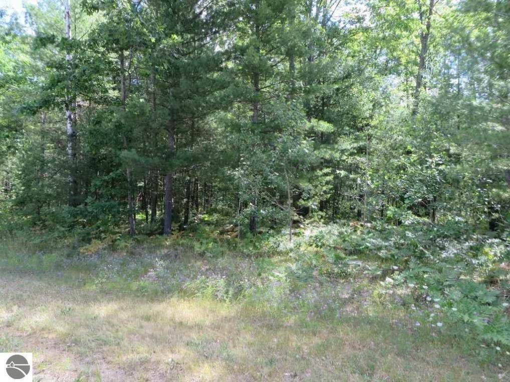 2180 NE Driftwood, Kalkaska, MI 49646