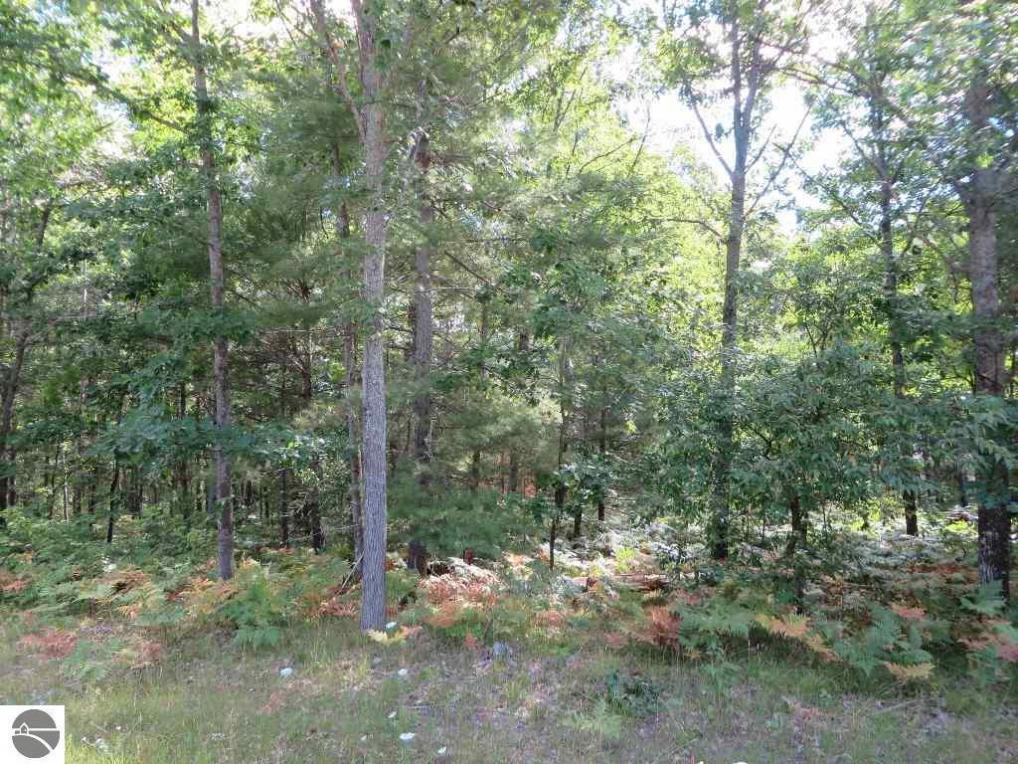 2160 NE Driftwood, Kalkaska, MI 49646