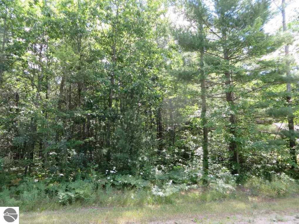 2120 NE Driftwood, Kalkaska, MI 49646