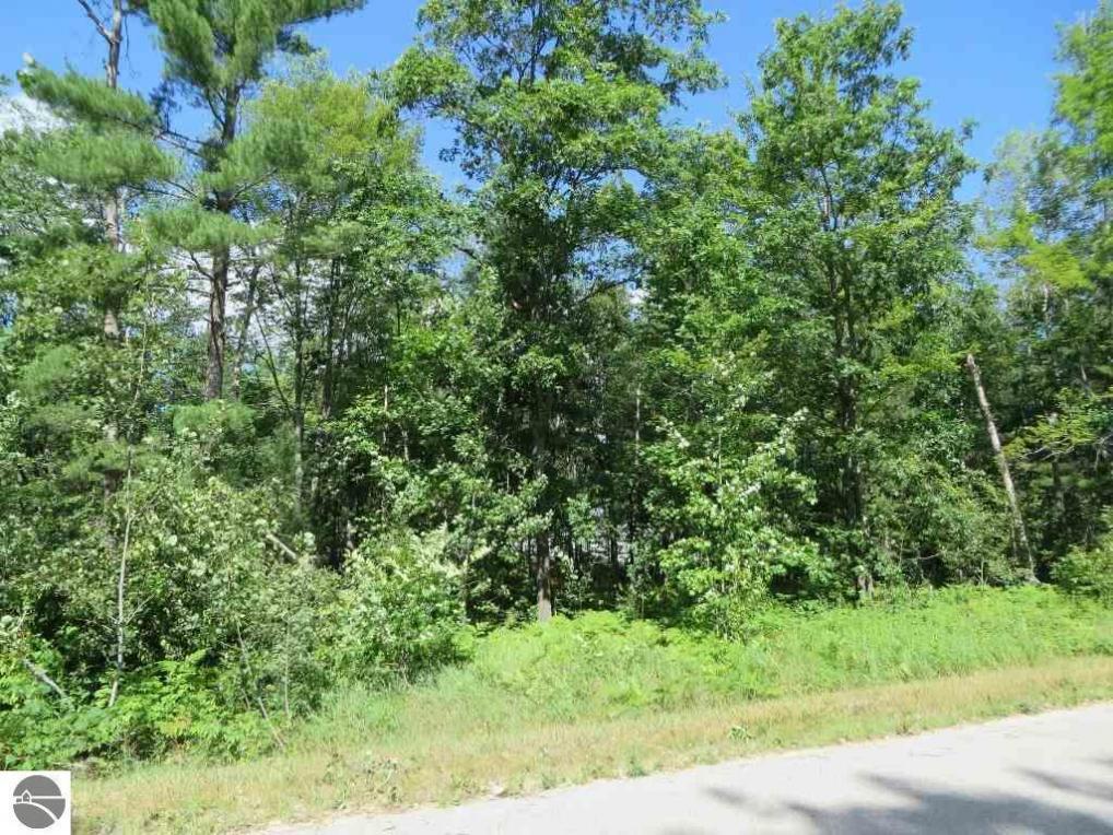 2121 NE Driftwood, Kalkaska, MI 49646