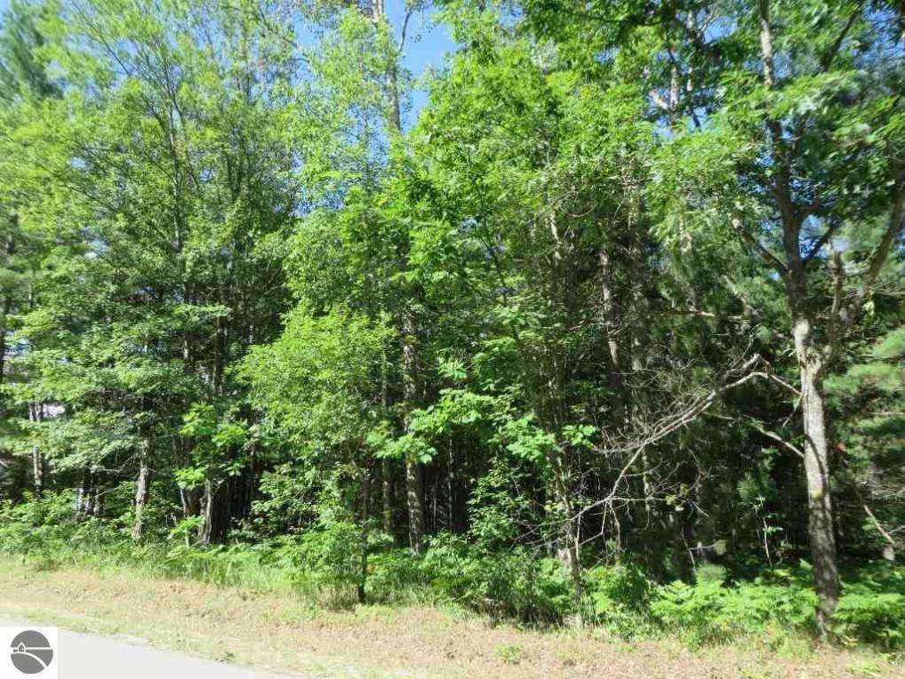2043 E Log Lake Road, Kalkaska, MI 49646