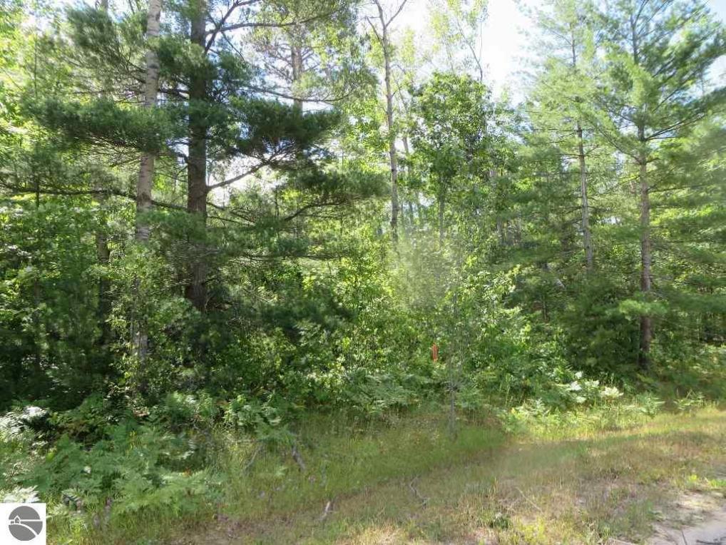 2080 NE Driftwood, Kalkaska, MI 49646