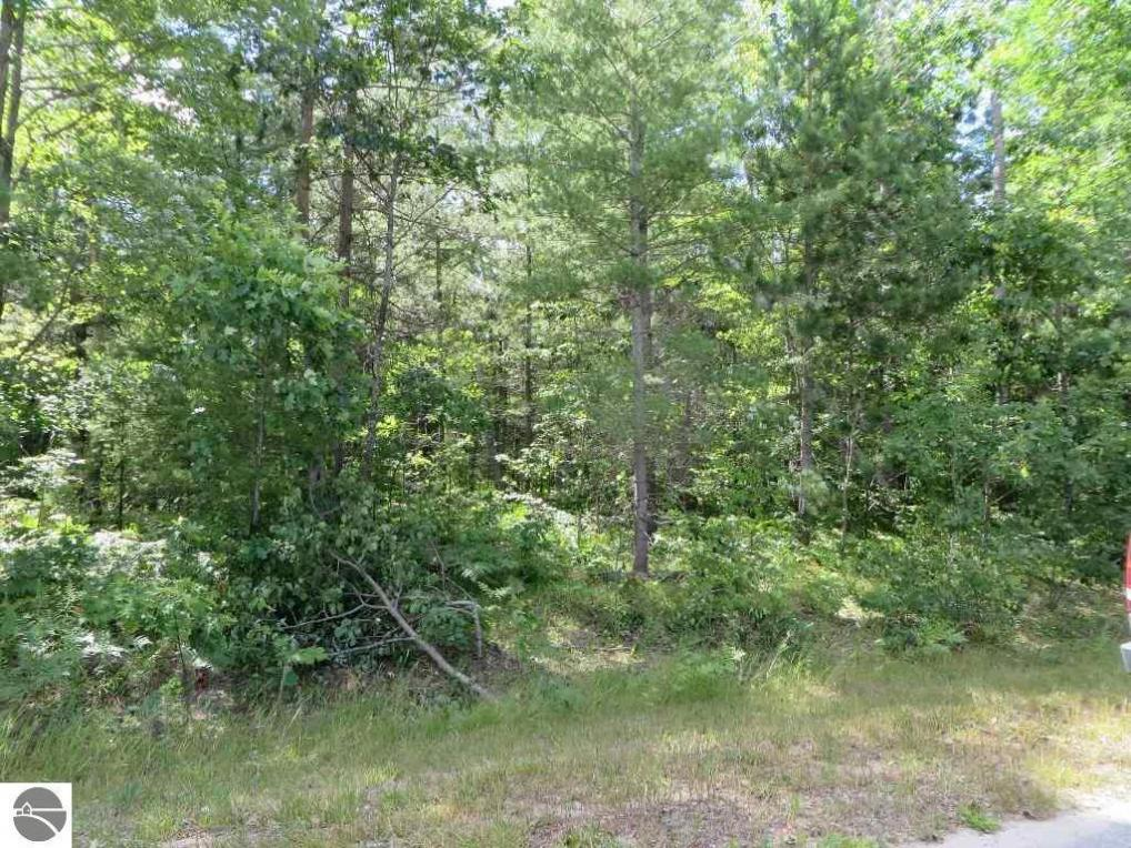 2060 NE Driftwood, Kalkaska, MI 49646