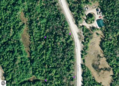 0000 Gull Island Road, Beaver Island, MI 49782