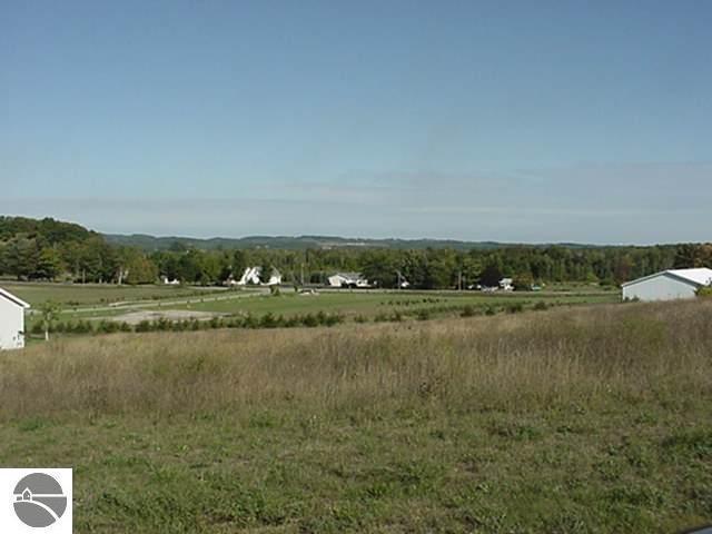 11117 E Meadow View Drive, Suttons Bay, MI 49682