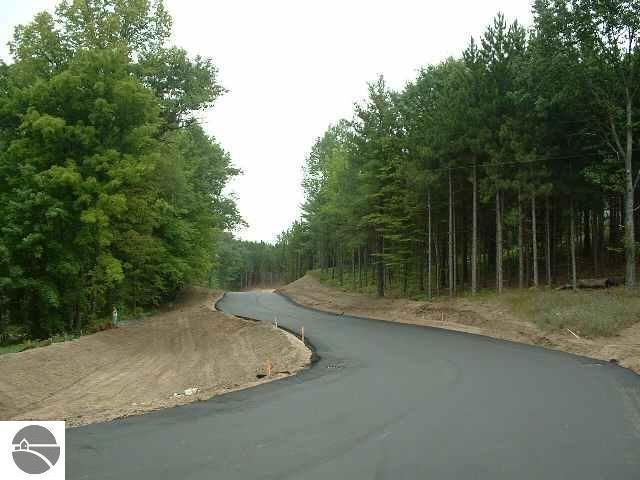 5479 Glendenning Trail, Williamsburg, MI 49690