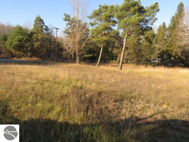 2115 Silver Pines Drive, Bellaire, MI 49615