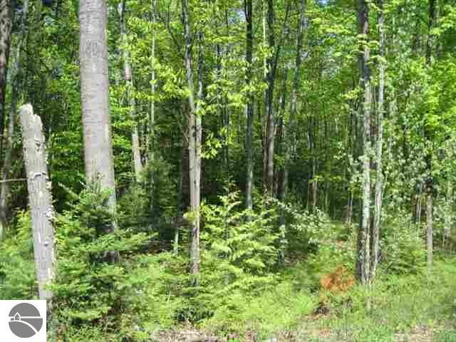 Lot 67-2 Old Dixie Highway, Ellsworth, MI 49729