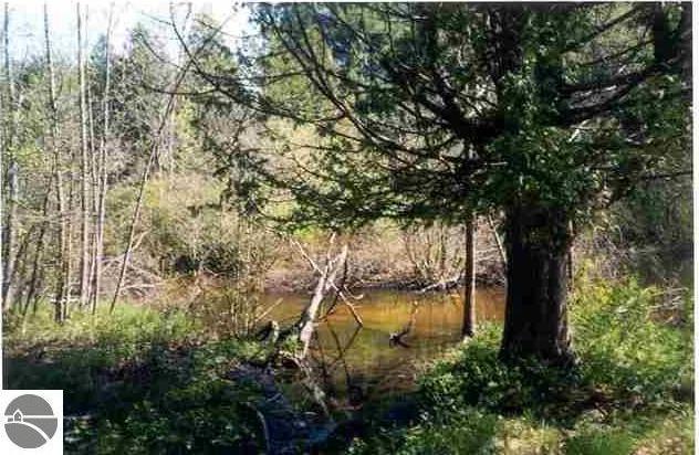 Six Mile Lake Road, Central Lake, MI 49622