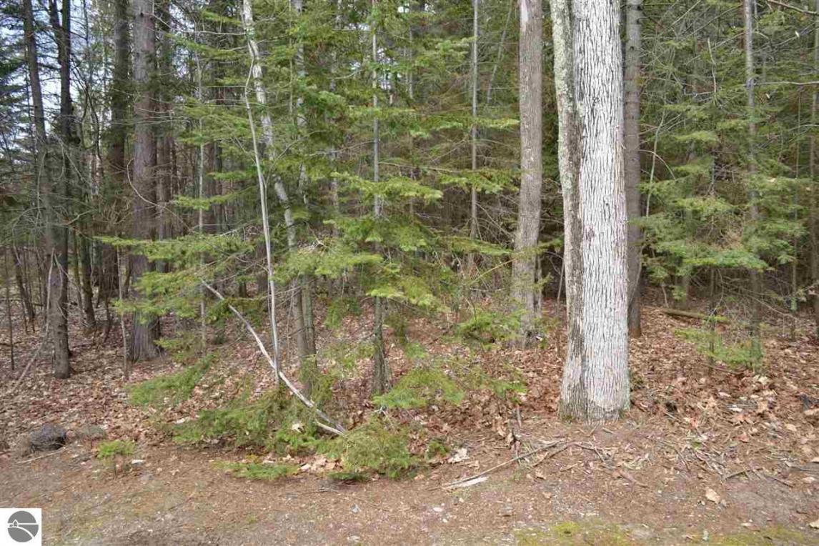 Lot 3 Golden Beach Drive, Kewadin, MI 49648