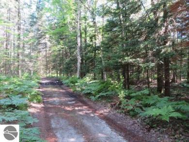 00 East Trail, South Boardman, MI 49680