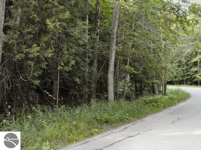 12818 Manitou Trail, Kewadin, MI 49648
