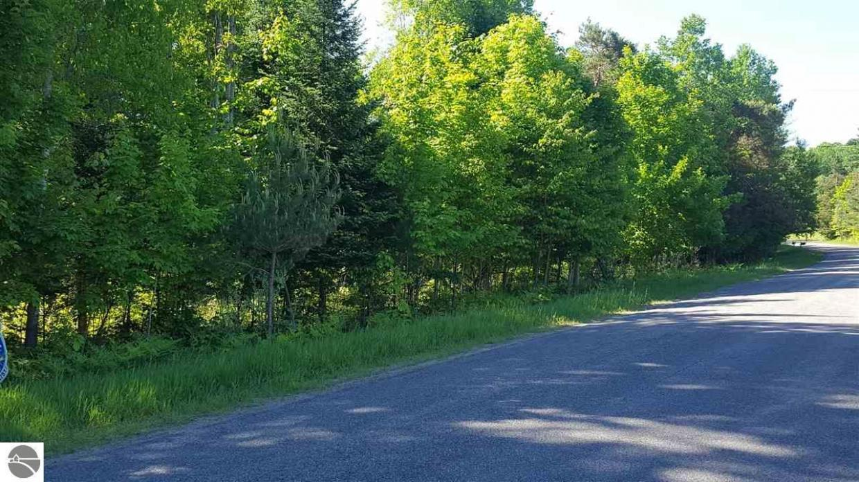 Eckhardt Road, Bellaire, MI 49615