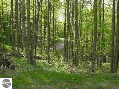 1125 River Mountain Road, Traverse City, MI 49696
