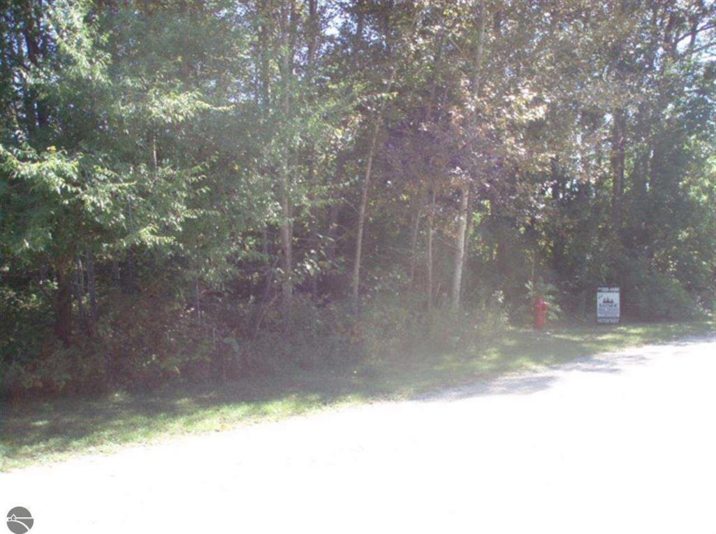 lot 37 River, Bellaire, MI 49615